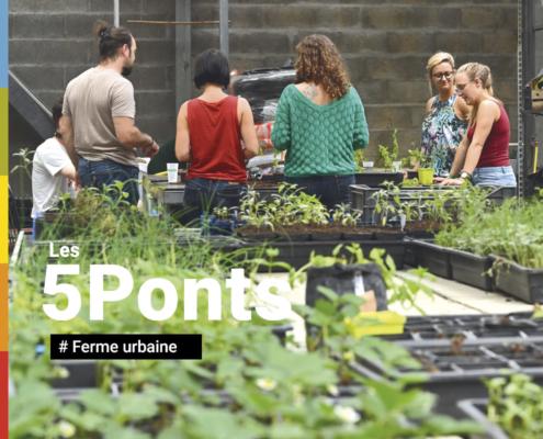 5Ponts - Ferme urbaine